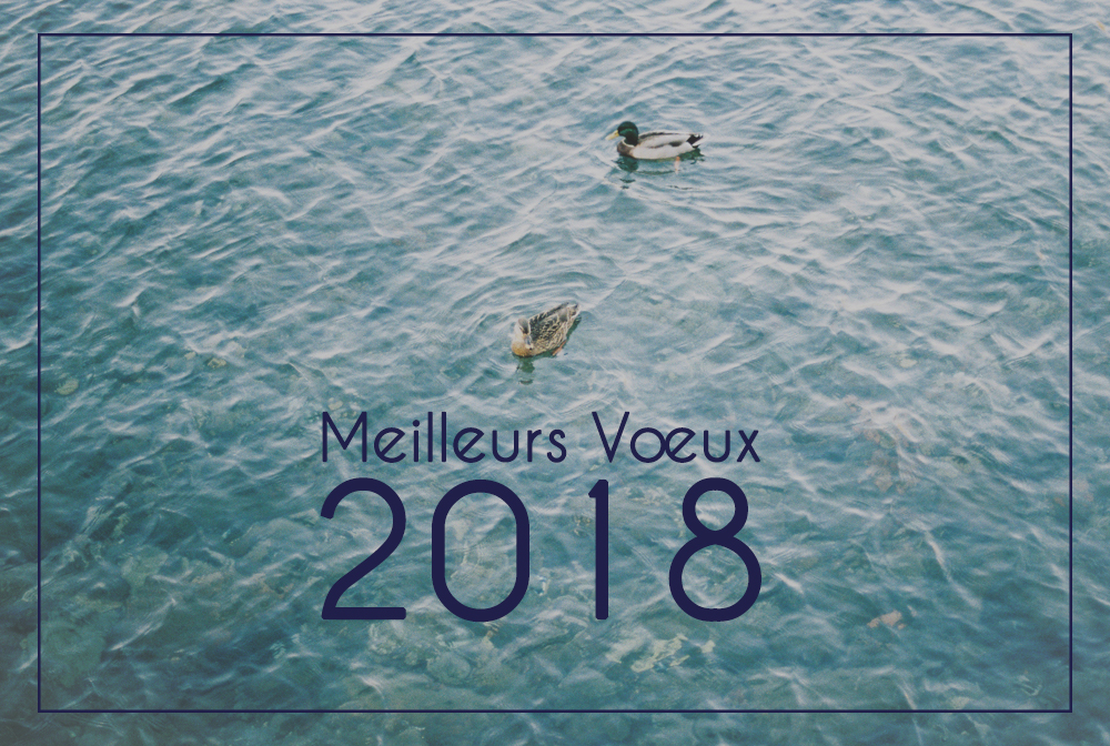Je vous souhaite une belle et heureuse année